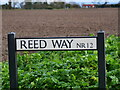 TG3531 : Sign for Reed Way by David Pashley