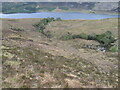 NH1894 : Allt a' Ghiuthais gorge by Chris Wimbush