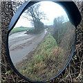 SO5235 : Mirror image by Jonathan Billinger