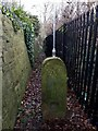 SE2534 : Cleared footpath alongside Christ the King church by Stephen Craven