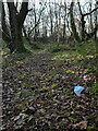 J4576 : Discarded face mask, Cairn Wood by Rossographer