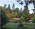 TQ4123 : Sheffield Park Gardens by PAUL FARMER