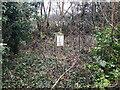 ST8384 : Milestone near Luckington by Nathan Moore