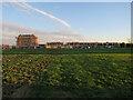 TL3967 : Barratt site, Northstowe by Hugh Venables
