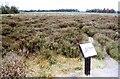 NH7344 : Culloden Battlefield by Jeff Buck