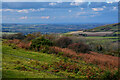 SZ5778 : Ventnor : Wroxall Down by Lewis Clarke