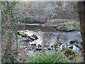 NZ2386 : Ruined Weir on the River Wansbeck by Les Hull