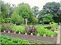 SP6202 : Organic vegetable garden by Marika Reinholds