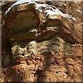 SK6039 : Mudstone deposits, Colwick Woods Park by Alan Murray-Rust