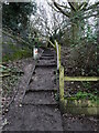TG2831 : Steps up to the Paston Way from Little London Road by David Pashley