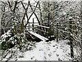 SJ7949 : Snowy path and footbridge by Jonathan Hutchins