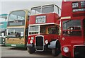 TQ0662 : Brooklands - Bus Rally by Colin Smith