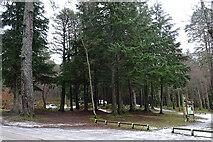 NJ3558 : Winding Walks Car Park by Anne Burgess