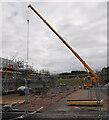 NH7949 : Crane, Croy by Craig Wallace
