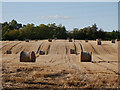 NH8149 : Harvested fields, Kilravock by Craig Wallace