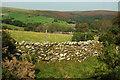 SX6762 : Farmland above the Avon by Derek Harper