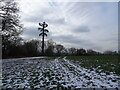 SO8793 : Snowy Mast by Gordon Griffiths
