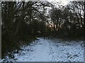 SE2534 : Houghley Gill in winter by Stephen Craven