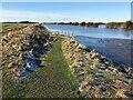 TF3902 : Frozen footpath - The Nene Washes by Richard Humphrey