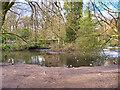 SD8204 : Small Lake in the Dell at Heaton Park by David Dixon