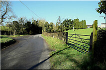 H4951 : Bolies Road, Knocknacarney / Bolies by Kenneth  Allen