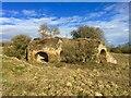 NU1711 : Twin lime kilns by Leanmeanmo