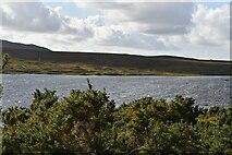 M0344 : Lough Bofin by N Chadwick