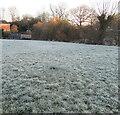 ST3090 : Frosty green, Rowan Way, Malpas, Newport by Jaggery