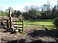 SJ4202 : Stile on the footpath south of Pulverbatch by Jeremy Bolwell