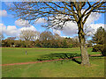 SO8994 : Golf course on Penn Common, Staffordshire by Roger  Kidd