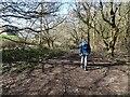 SO8798 : Smestow Footpath by Gordon Griffiths