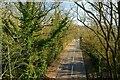 SK3015 : Bath Lane, Moira by Oliver Mills