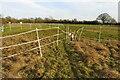 SP9444 : Blocked footpath in the paddock by Philip Jeffrey