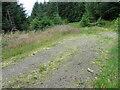 NS6207 : Observation platform beside track in Lochingirroch Forest by Chris Wimbush