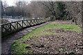 SP4977 : Newbold Quarry Park by Stephen McKay