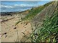 NO4401 : Anti-tank blocks, Largo Bay, Fife by Claire Pegrum