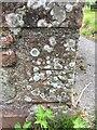 NY0265 : OS Cut Mark - Caerlaverock, Castle Cottage by thejackrustles