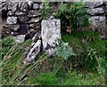 SX2475 : Old Boundary Marker west of Kilmar Tor by P G Moore