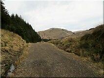 NS2698 : Forest track in Gleann Culanach by John Ferguson