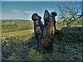 "SE2002 : ""Sleepy John"" by the Trans Pennine Trail by Neil Theasby"