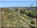 NC6557 : Deer fence bordering Borgie Forest by Chris Wimbush