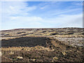 NY9947 : Burned heather moorland by Trevor Littlewood