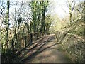 SD2878 : Gill Banks, The Cumbria Way Alternative Route by Adrian Taylor