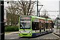 TQ3365 : Tramlink by Peter Trimming