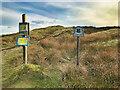 SD7719 : Holcombe Moor by David Dixon