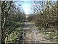 SE3621 : Public bridleway on the site of St John's No 2 Colliery by Christine Johnstone