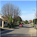 TL3844 : Melbourn: a stinkpipe on Orchard Road by John Sutton