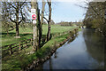 SP1404 : The Coln at Quenington by Des Blenkinsopp
