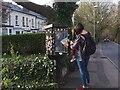 SE2436 : Little Free Library, Pollard Lane by Stephen Craven