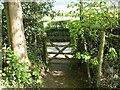 NY2623 : Footpath Gate, Briar Rigg by Adrian Taylor